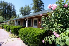russian-river-hotel-the-woods-cottages-cabins-10