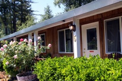 russian-river-hotel-the-woods-cottages-cabins-12